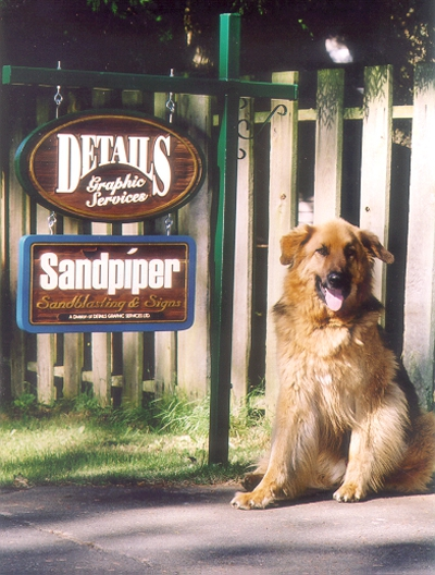 cedar - the worlds best dog and a nice sign too